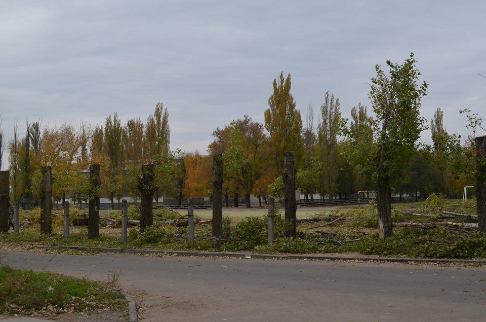 У Миколаєві біля шкли масово кронують дерева