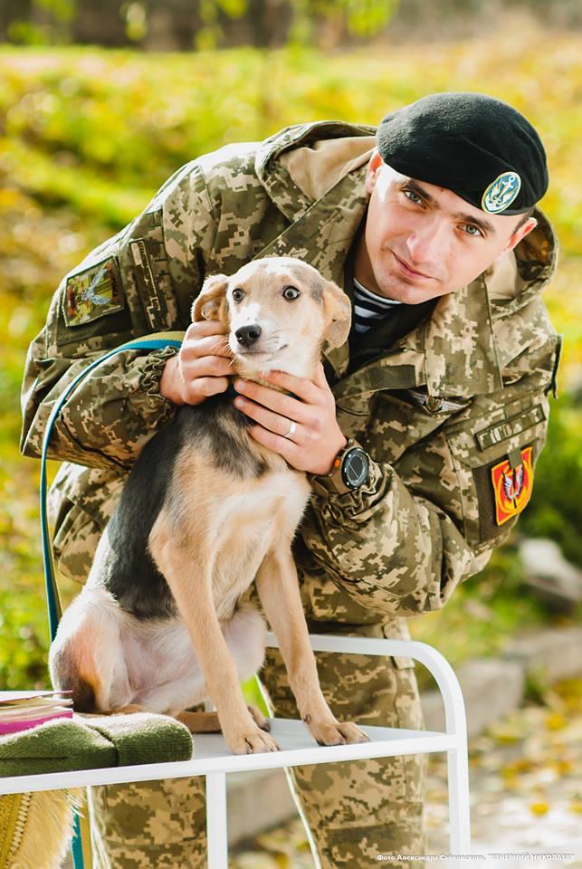 Миколаївські морпіхи дали старт акції пошуку домівки безпритуальним собакам