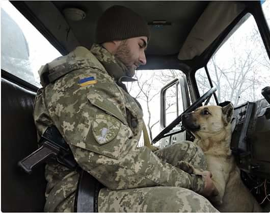 Чим займаються на Донбасі найкращі друзі бійців АТО - 10 - фото 6