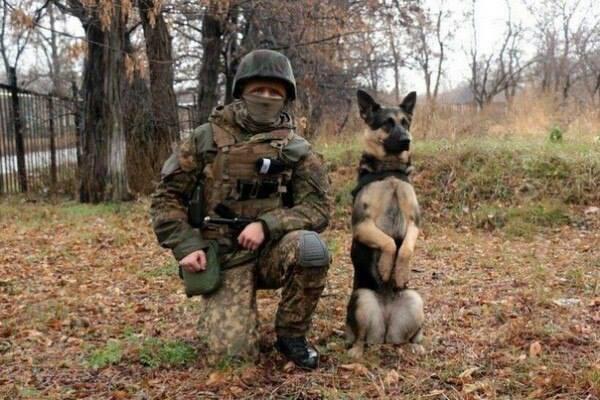 Чим займаються на Донбасі найкращі друзі бійців АТО - 10 - фото 10