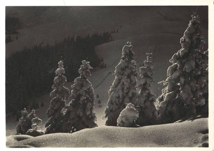 Якими побачили фотографи засніжені Карпати 90 років тому - фото 3