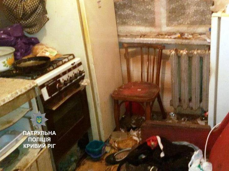 У Кривому Розі дівчина лікувала вдома мертвих котів - фото 1
