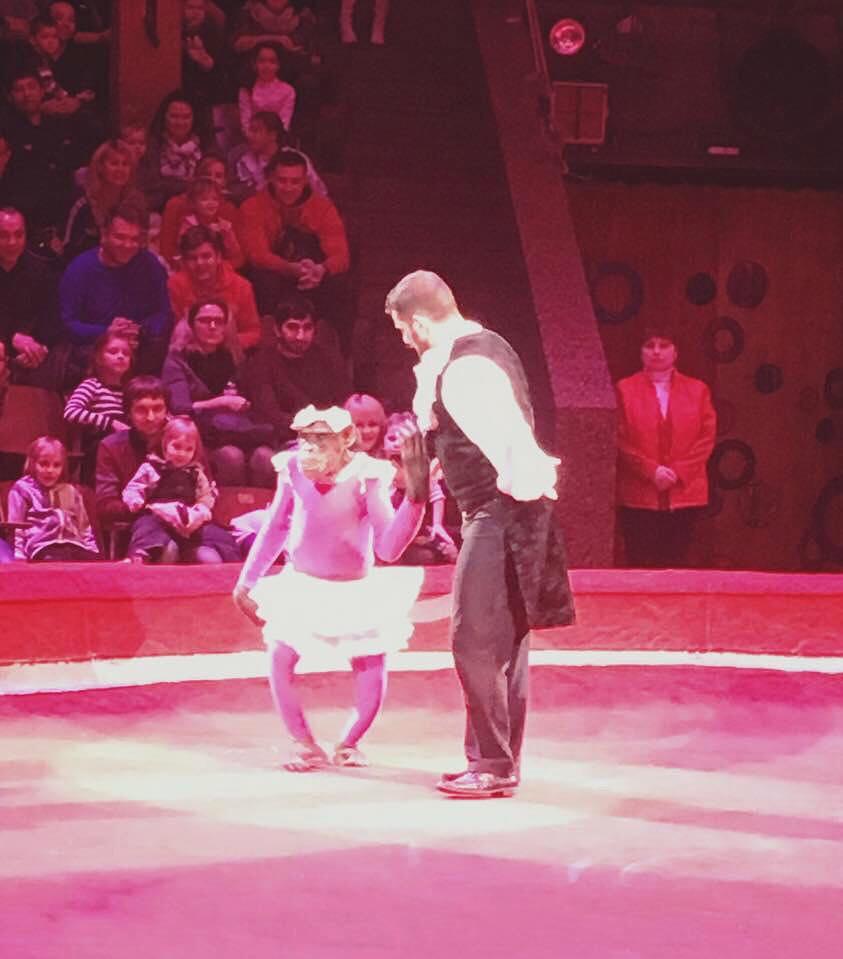 Тварини і тварюки: коли директори цирків самі полізуть в палаюче колесо - фото 2