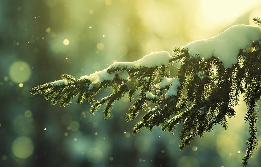15 причин полюбити наступаючі холода - фото 14