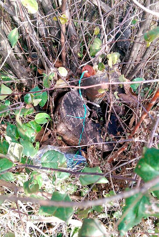 Харківські гвардійці виявили сховок боєприпасів у Ясинуватій (ФОТО) - фото 4