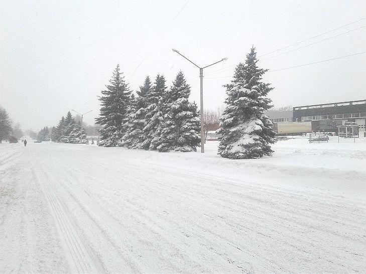 Полтава потерпає від снігопадів - фото 5
