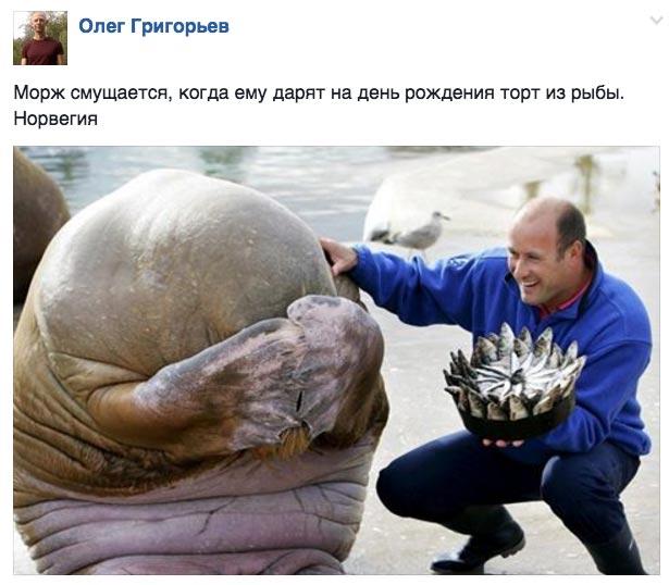 Навіщо петербуржцям встановили добову норму хліба та коли скінчиться дощ - фото 12