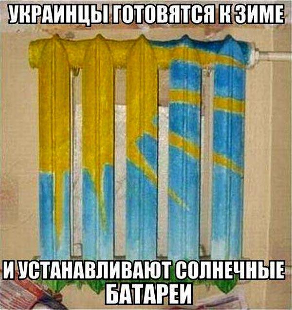 Депутатська зарплата та не справжня Надія Савченко - фото 14