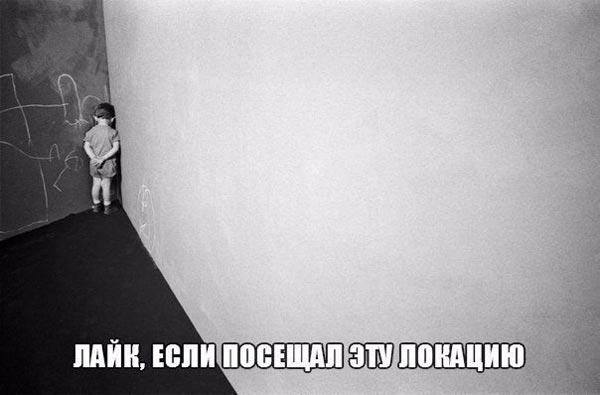 Депутатська зарплата та не справжня Надія Савченко - фото 16