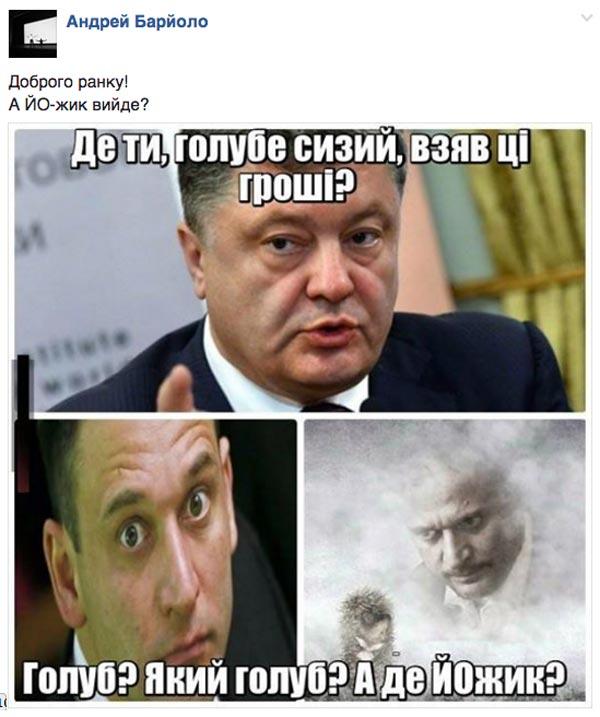 Як вкрали задекларовані вили Ляшка та сиза голубка Юлія Тимошенко - фото 7