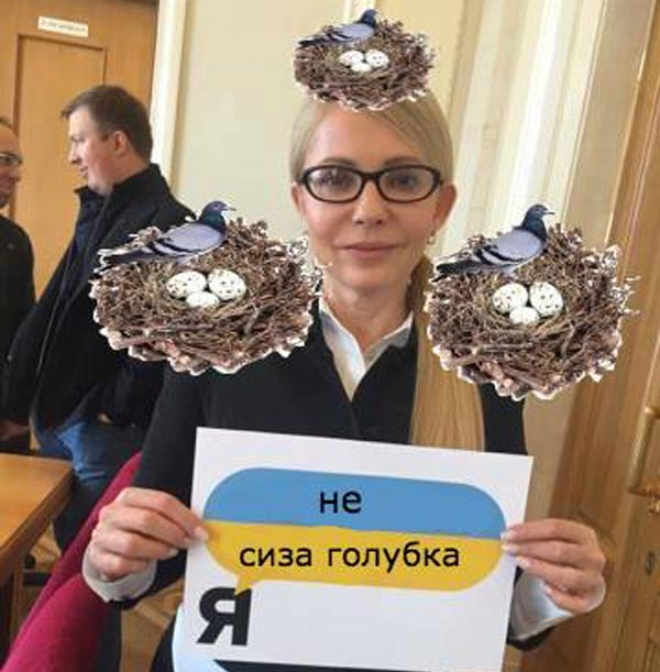 Як вкрали задекларовані вили Ляшка та сиза голубка Юлія Тимошенко - фото 9