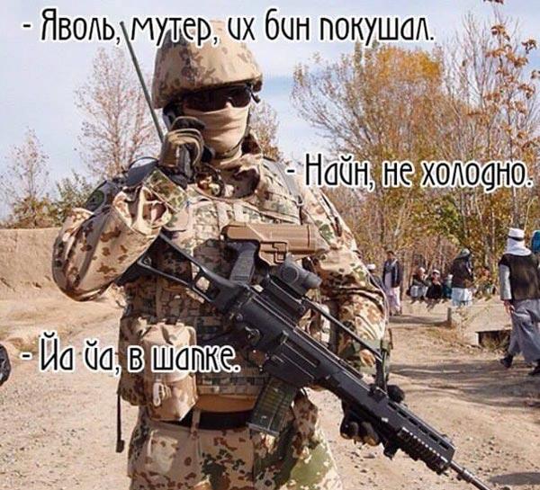 Як вкрали задекларовані вили Ляшка та сиза голубка Юлія Тимошенко - фото 19