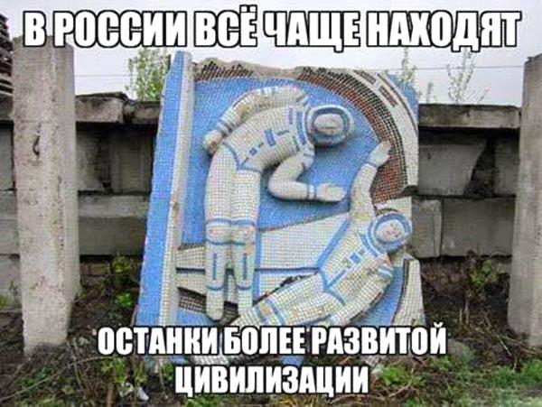 Як вкрали задекларовані вили Ляшка та сиза голубка Юлія Тимошенко - фото 14