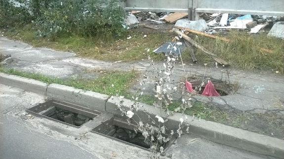 Берег Дніпра у столиці перетворився на масштабне сміттєзвалище  - фото 3