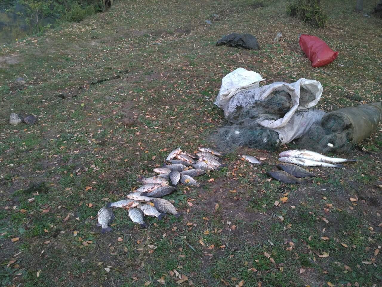 На Олександрівському та Ташлицькому водосховищай впіймали браконьєрів - фото 1