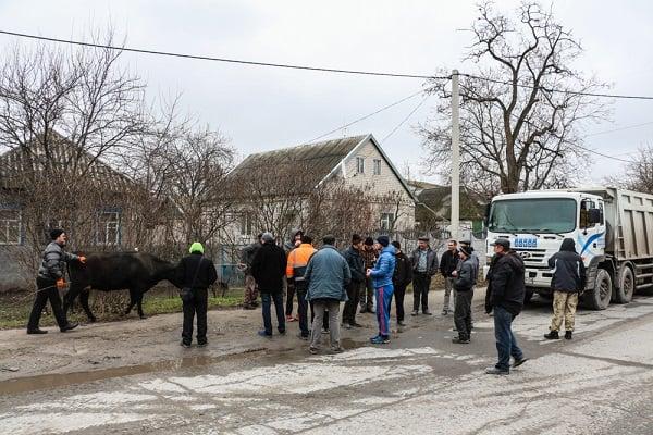ВПриднепровске водители фургонов блокировали проезжую часть