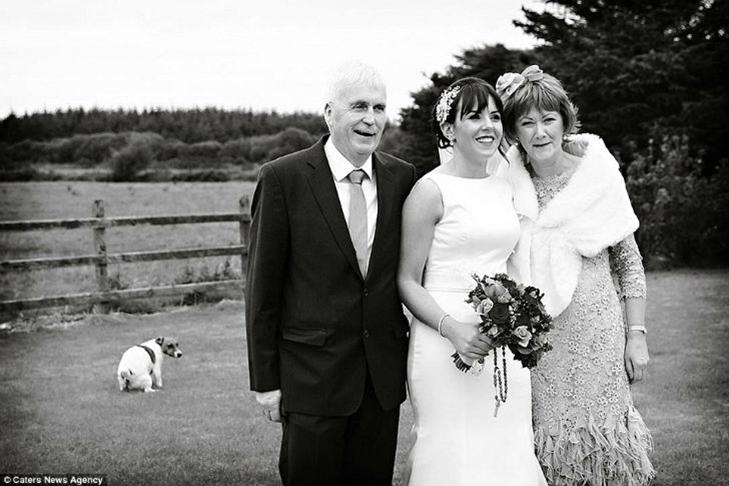 30 прикладів, коли у весільного фотографа все добре з почуттям гумору - фото 16