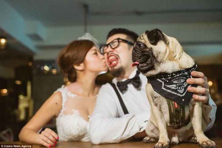 30 прикладів, коли у весільного фотографа все добре з почуттям гумору - фото 22