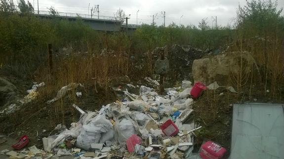 Берег Дніпра у столиці перетворився на масштабне сміттєзвалище  - фото 2