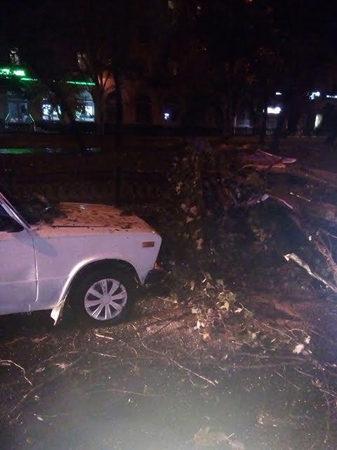 На Миколаївщині через негоду 53 населені пункти залишились без світла - фото 5