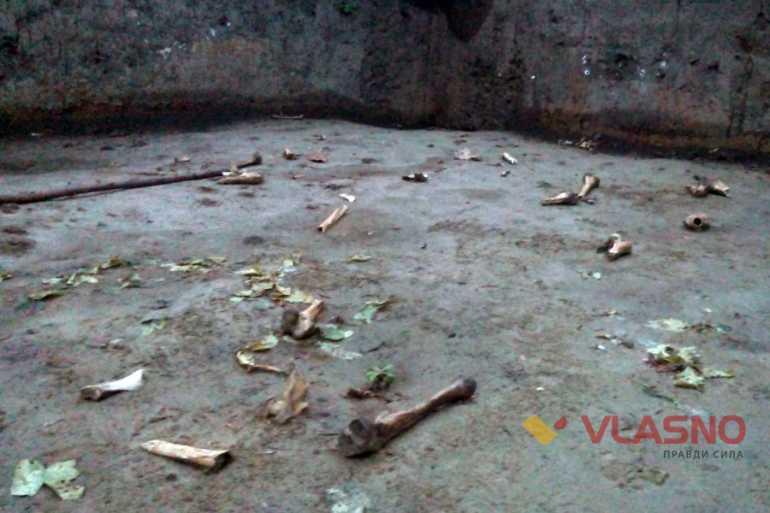 У Вінниця просто неба валяються людські останки  - фото 1