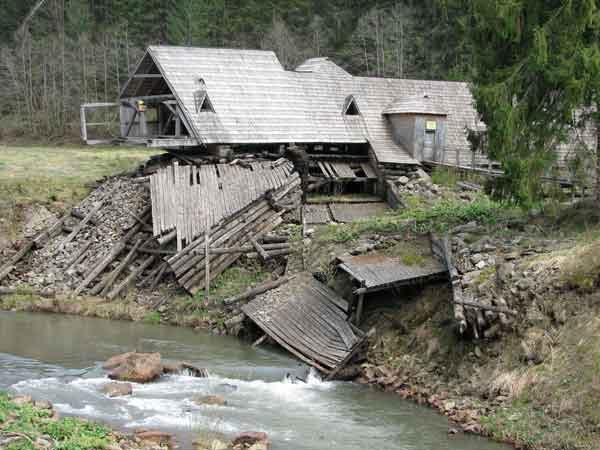 Чому село Синевир стало раєм для лісорубів та бокорашів - фото 3