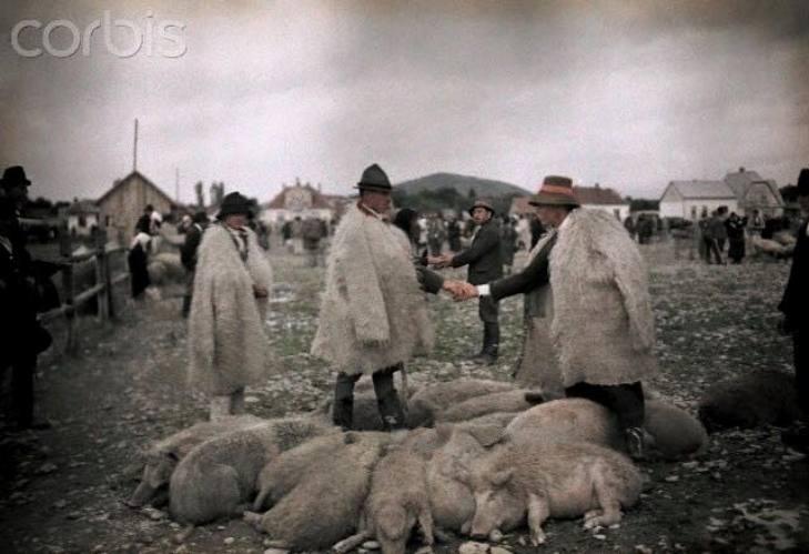 Як колоритно виглядало Закарпаття та закарпатці у минулому столітті - фото 1