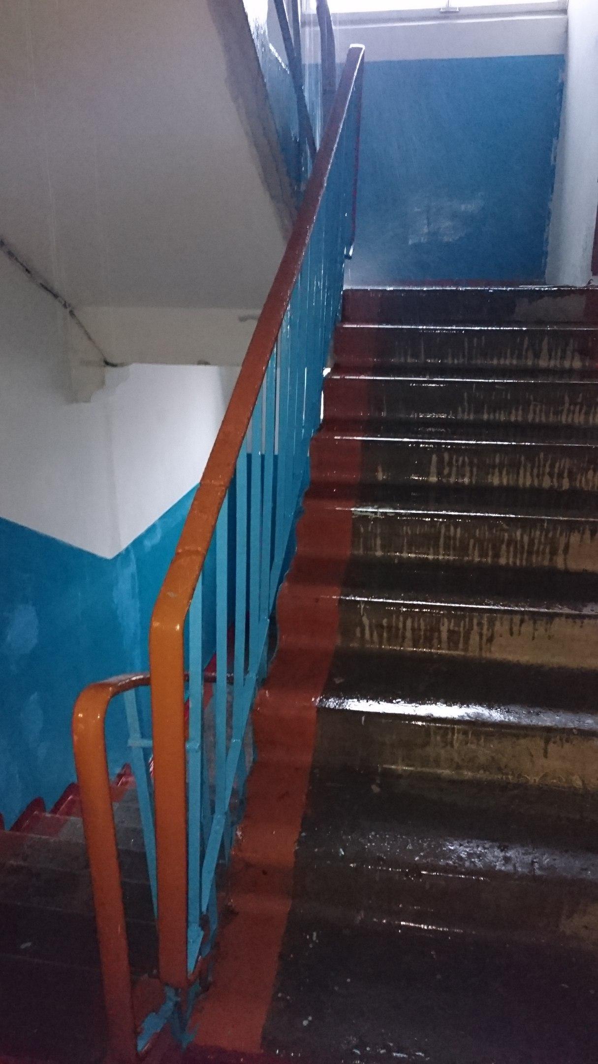 Миколаївську багатоповерхівку затоплює дощем: ЖЕК не реагує