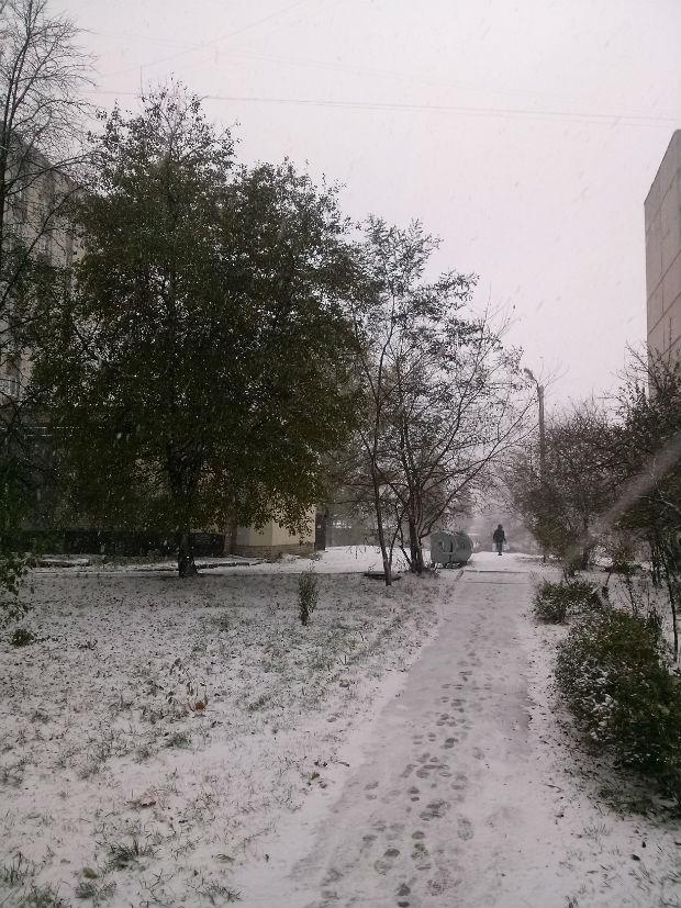 У Харкові сильний снігопад засипає ще зелені дерева (ФОТО) - фото 3
