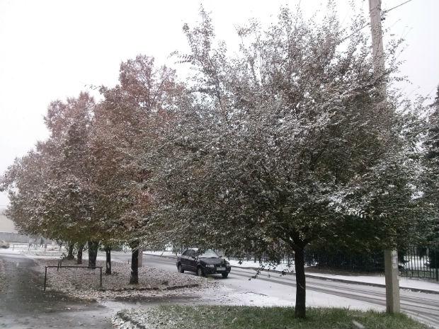 У Харкові сильний снігопад засипає ще зелені дерева (ФОТО) - фото 2