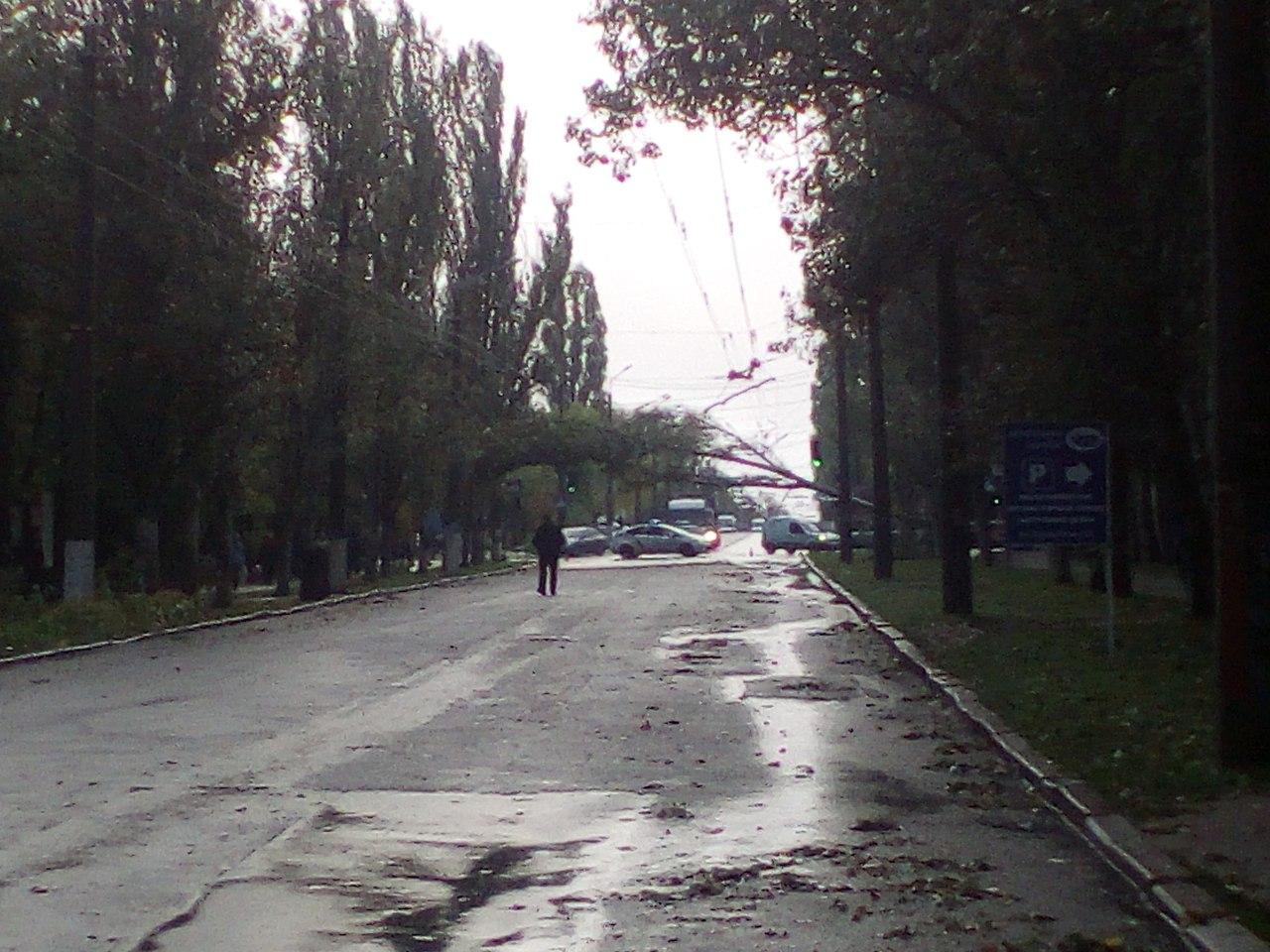 Парасолька не допоможе: Як у Миколаєві понівичіло іномарки та скрючило білборди - фото 8