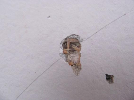 У Харкові показали підірвали підірване подвір'я кримінального авторитета (ФОТО) - фото 2