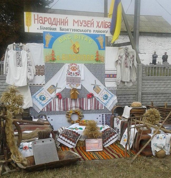 Як вінничани відсвяткували 150-річчя від дня народження Грушеського - фото 1