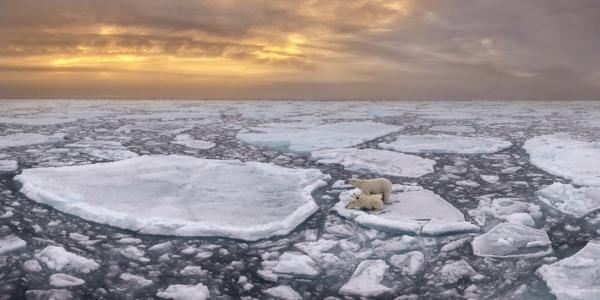 Неймовірні панорамні фото Epson International, які вразили світ - фото 5
