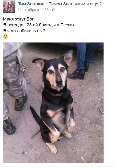 Чим займаються на Донбасі найкращі друзі бійців АТО - 10 - фото 3
