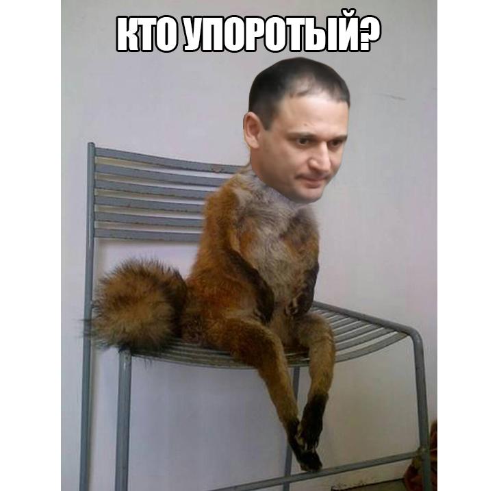 Упоротий Добкін (ФОТОЖАБИ) - фото 4