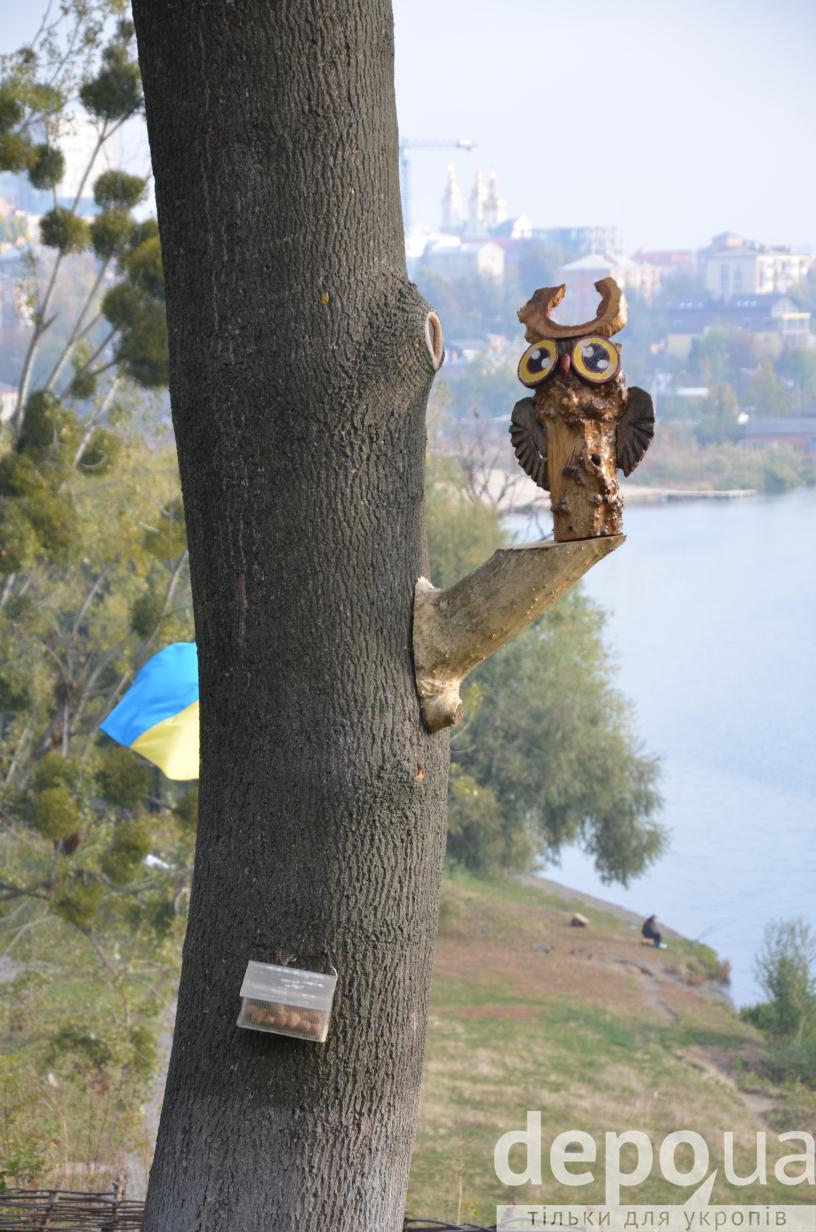 """Як мешканці """"хрущівки"""" перетворили чагарники на найкращий двір у Вінниці - фото 11"""