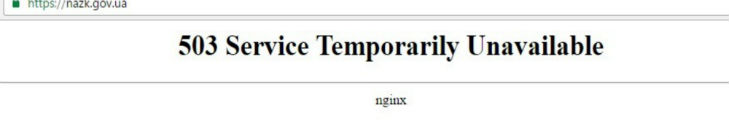 Сайт НАЗК не працює добу: декларації недоступні  - фото 1