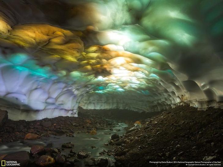 """Роботи фіналістів конкурсу National Geographic """"Кращий фотограф природи 2016"""" - фото 8"""