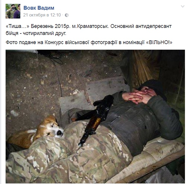 Чим займаються на Донбасі найкращі друзі бійців АТО - 10 - фото 1
