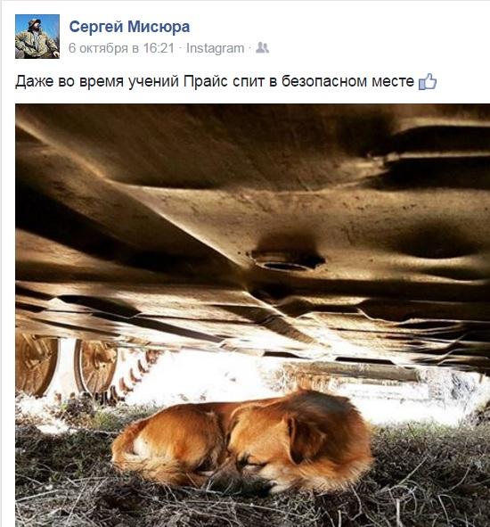 Чим займаються на Донбасі найкращі друзі бійців АТО - 9 - фото 5