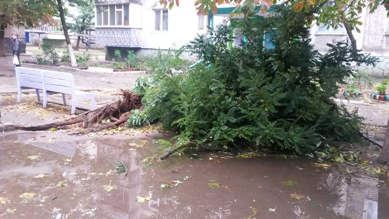 Парасолька не допоможе: Як у Миколаєві понівичіло іномарки та скрючило білборди - фото 13