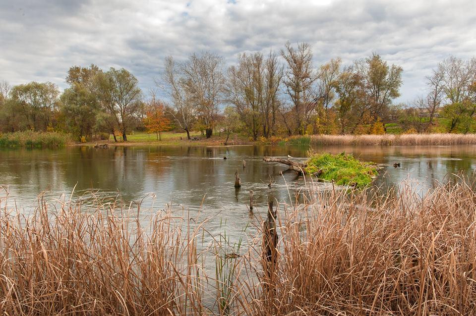 Страуси і піщані кар'єри: Як переселенка розвиває зелений туризм в зоні АТО - фото 3