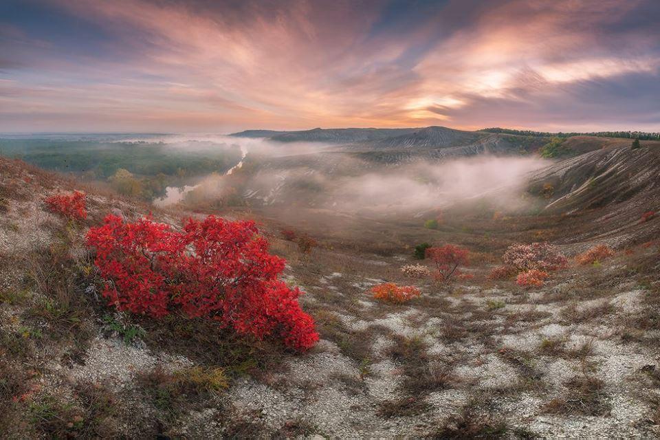 Страуси і піщані кар'єри: Як переселенка розвиває зелений туризм в зоні АТО - фото 2
