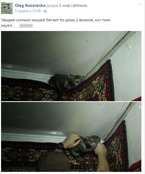 За що котам в АТО треба поставити пам'ятник-13 - фото 5