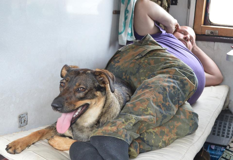 Чим займаються на Донбасі найкращі друзі бійців АТО - 10 - фото 13