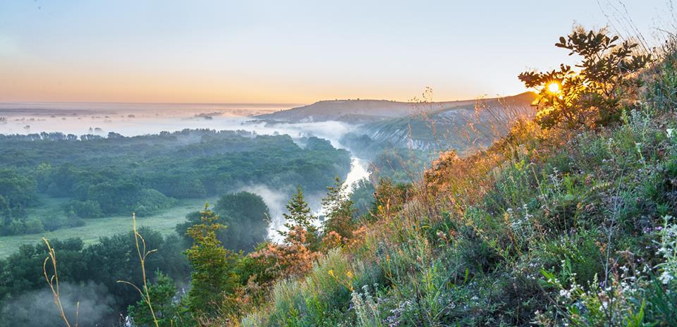 Страуси і піщані кар'єри: Як переселенка розвиває зелений туризм в зоні АТО - фото 10