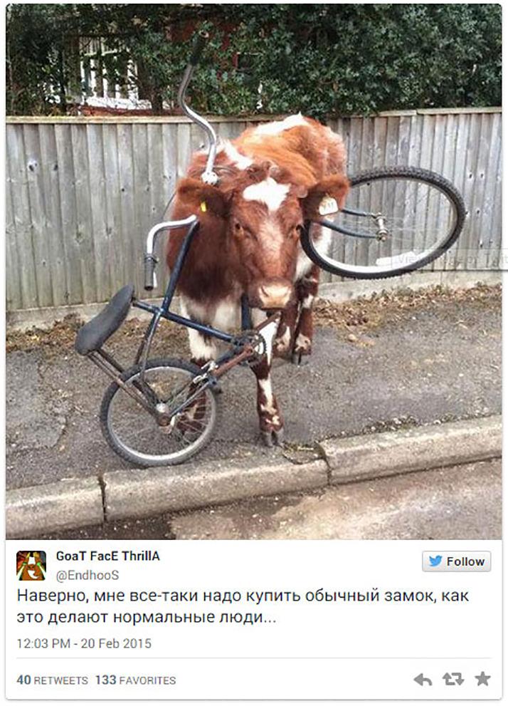 15 іскрометних твітів, які вас розсмішать - фото 7