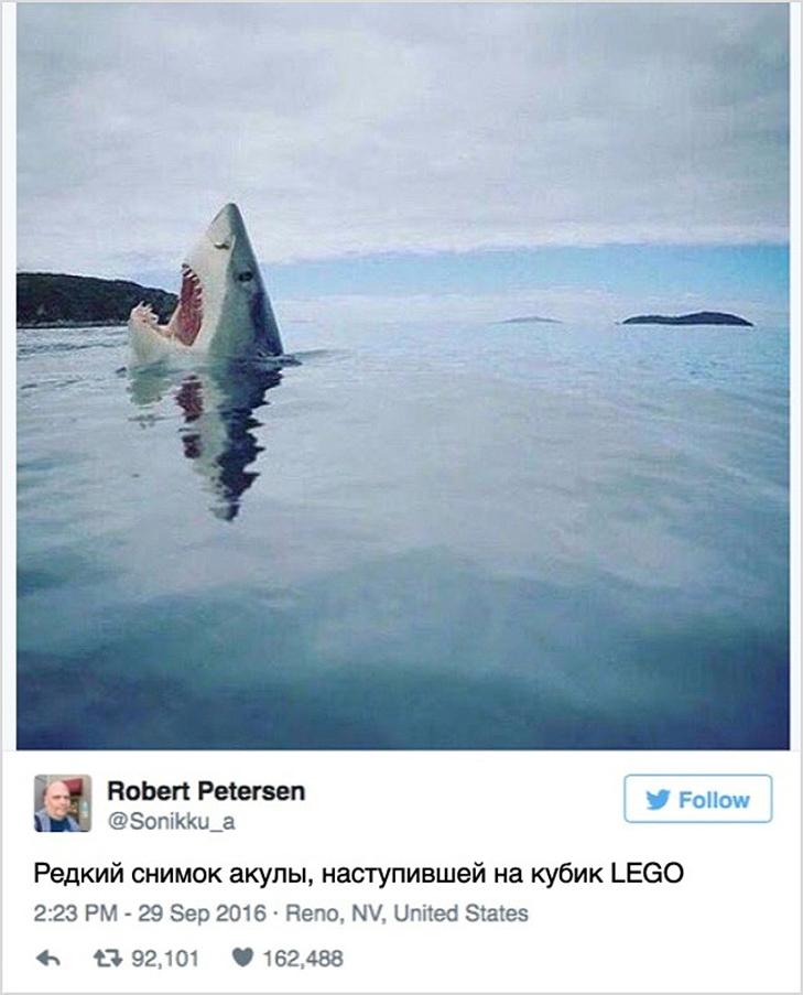 15 іскрометних твітів, які вас розсмішать - фото 1