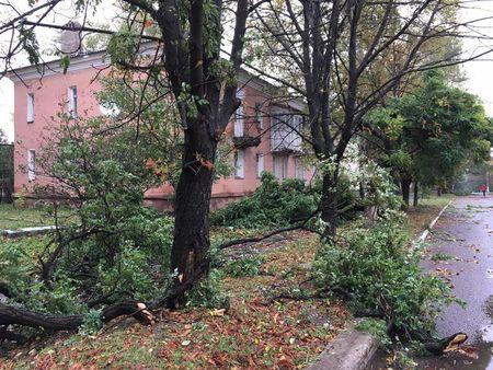 Негода у Донецьку: повалені дерева та зруйновані покрівлі (ФОТО) - фото 5